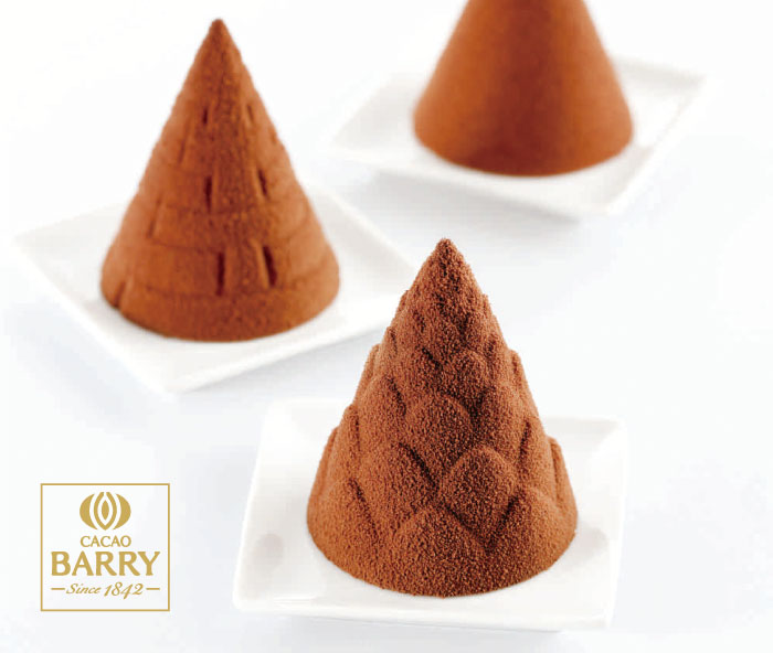 CACAO BARRY Moules a Chocolat〜カカオバリー チョコ型