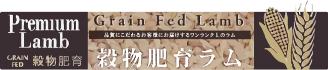 穀物肥育ラム/グレインフェッドラム