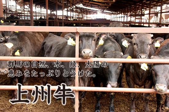 トップレベルの肉質を持つと言われる群馬県産上州牛