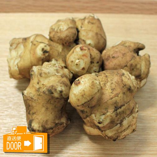[直送]有機栽培 菊芋(トピナンブール) 約1kg[361193]